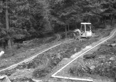 Example of a pressure distribution septic system in a forested area.